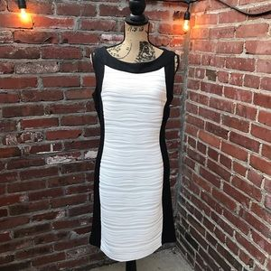 Calvin Klein Black and White Midi Dress
